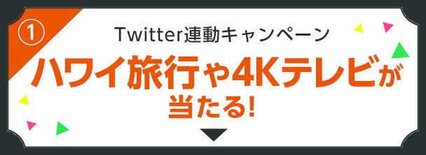 Twitter連動キャンペーン ハワイ旅行や4Kテレビが当たる!