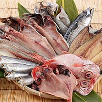 魚介類・シーフード