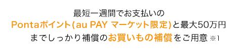 最短一週間でお支払いのPontaポイント(au PAY マーケット限定)補償と、最大50万円までしっかり補償のお買いもの補償をご用意
